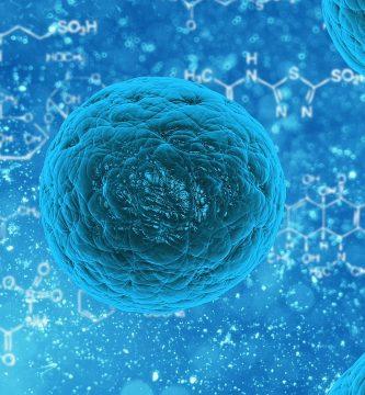 Bacterias nitrificantes en biofloc