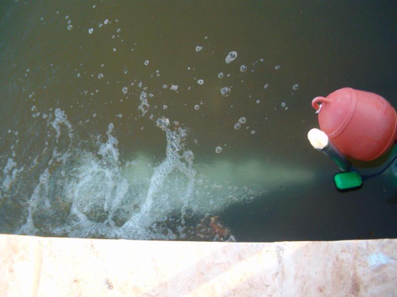 Aireador hidroinyector acuicultura simbiótica