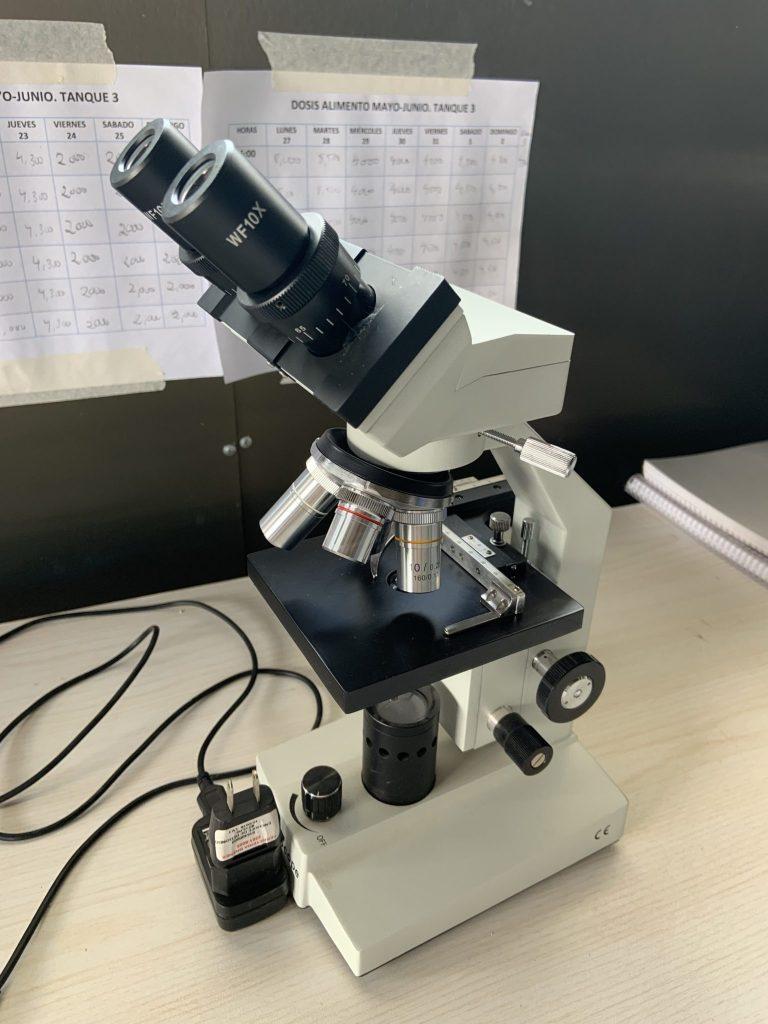 Microscopio acuicultura simbiótica. Biofloc