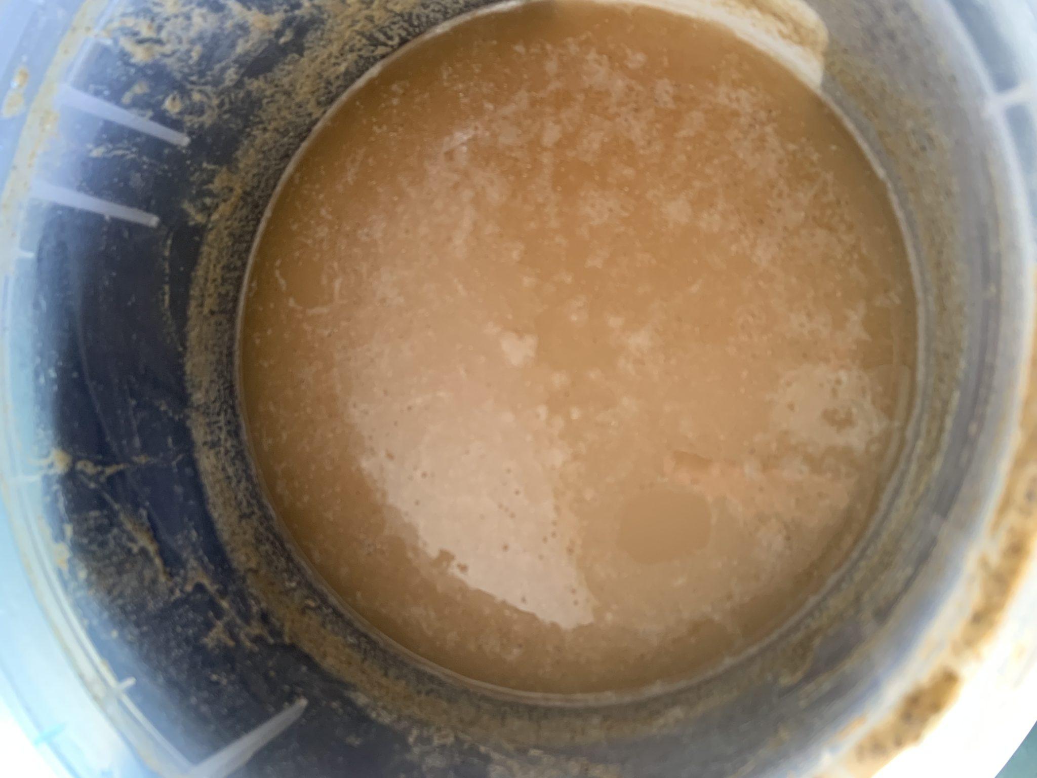 El fermento de soya revoluciona el mundo de la acuicultura simbiótica