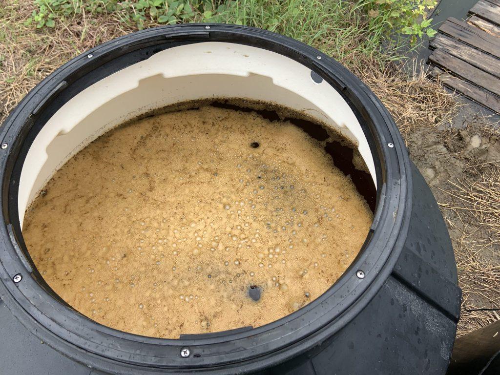 Cultivo de levadura en acuicultura simbiótica