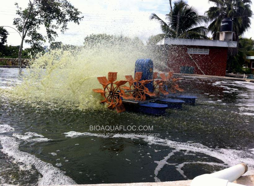 Aireadores de paleta en acuicultura. Ventajas y Desventajas.