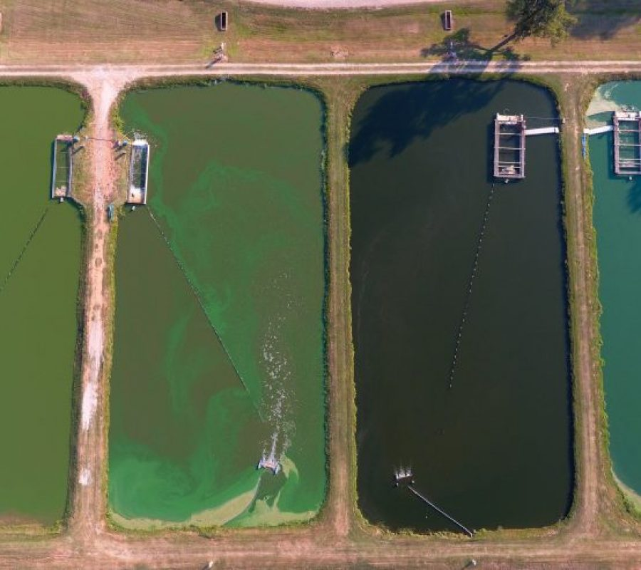 In pond receway system.